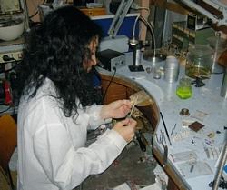Emanuela Di Nicola